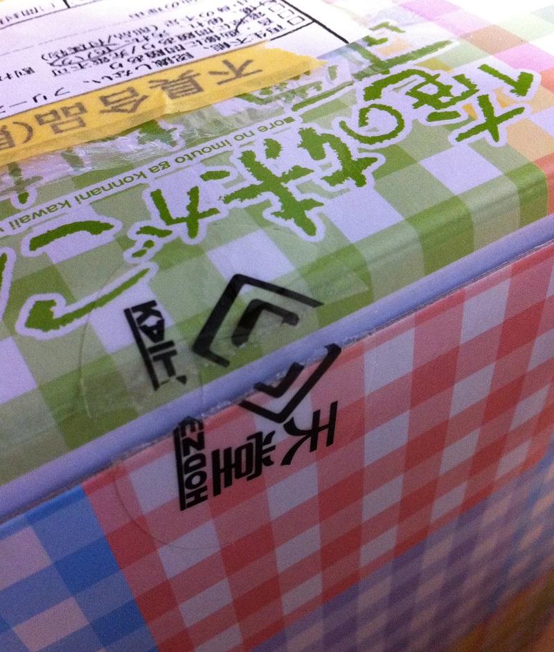FBA返品された黒猫フィギュア (7)